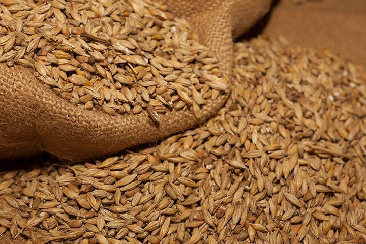 grain_small